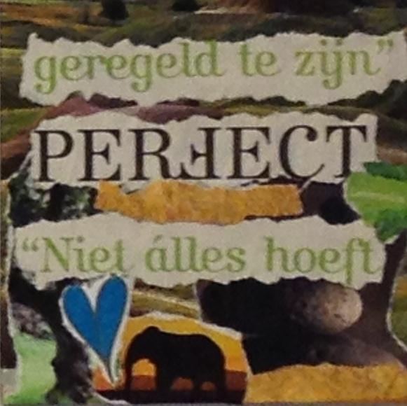 niet alles hoeft perfect te zijn